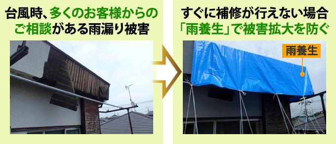 雨養生による対応例