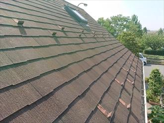 横浜市瀬谷区本郷にて急すぎる勾配がついた化粧スレート屋根は苔で覆われてしまっておりました