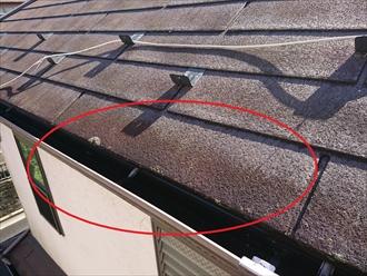雨樋がつまると水が流れなくなり、その結果軒先の屋根材が雨水を吸い込んでしまう
