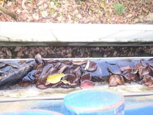 瓦屋根|雨樋の水漏れ|枯葉には要注意・落ち葉避けネット|神奈川県大和市