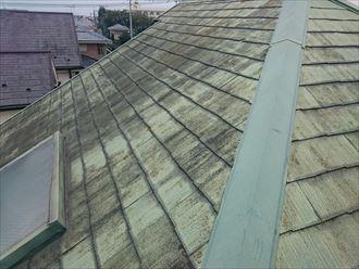 屋根,汚れ,カビ