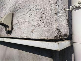 石灰質,外壁