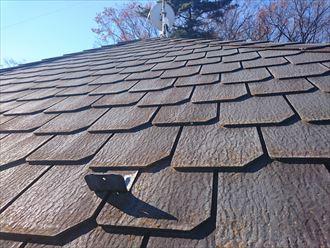 屋根,点検