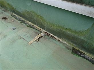 川崎市高津区でシート防水を直すかカバー工事をおこなうか決めます
