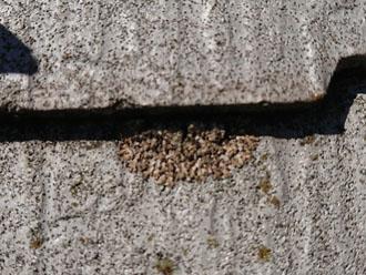横浜市都筑区北山田にてお住まいの点検調査、屋根と外壁に色褪せや苔が見られたら塗り替えをしましょう