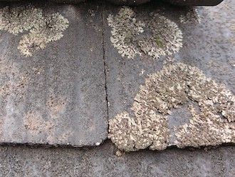大和市代官にてスレート屋根の点検調査、屋根材を守るために10年前後での塗り替えをおすすめします
