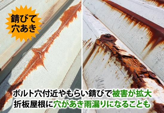 ボトル穴付近やもらい錆びで被害が拡大。折半屋根に穴があき雨漏りになることも