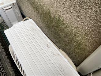 川崎市高津区北野川のお住まいのモルタル外壁は湿気の多い北面で藻の繁殖が広がっておりました