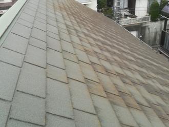 伊勢原市沼目にてスレート屋根の調査、苔の発生は見た目が悪化するだけでなく雨漏りを引き起こす可能性もあります