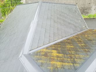 苔が付着したスレート屋根
