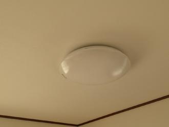 綺麗な天井