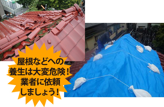 屋根などへの養生は大変危険なので、業者に依頼しましょう