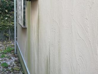 三浦市原町にてモルタル外壁の点検調査、外壁の苔は塗料の劣化が原因なので塗り替えをすることで解消できます