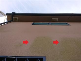 横浜市都筑区大熊町にて築16年になるお住まいの外壁点検調査、リシン仕上げのモルタル外壁には多く藻が繁殖しており塗装でのメンテナンスが必要です