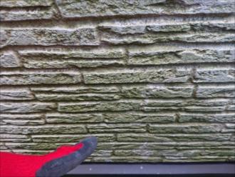 横浜市西区東久保町にて築10年初めての外壁塗装の為点検調査、綺麗な外壁だったはずがいつからか苔が多く生えているのは塗り替えのサイン