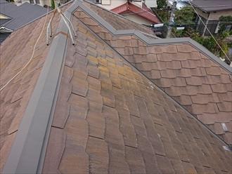 東側から撮影した屋根全体の様子