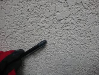 縦横無尽に出始めたら塗装で保護をしておきましょう