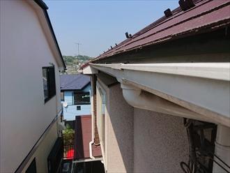 屋根に上がる途中、軒先に生えた苔を確認