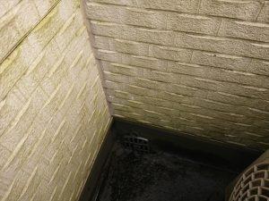 バルコニー内側の壁も日当たりが悪く水が残りやすい箇所です。放置しておくとご覧の様に汚れの温床になってしまい、最悪雨漏りに繋がってしまいます。サイディングはそのものも大事ですが継ぎ目に使われるコーキングが劣化し割れやはく離を起こすとそこから雨水が侵入し内部の木材を腐食させてしまいます。
