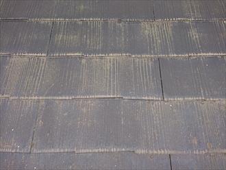 よくみるとスレート屋根材の重なり部分が変色しています。縁切りがされていないために雨水が小口に留まってしまい逃げ道がなくなっている状態です。
