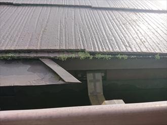 横浜市神奈川区羽沢南にてスレート屋根の調査、スレート表面の塗膜は経年で必ず劣化してしまいますので10年前後経過したら塗り替えをしておきましょう