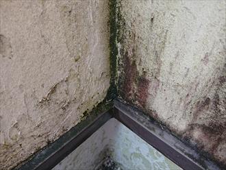 横浜市鶴見区北寺尾にて綺麗なコテ仕上げのモルタル外壁は雨水を吸い込みすぎた影響で雨漏りしそうな状態でした