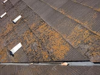 横浜市旭区白根にて築20年経過した屋根調査、スレートに多く苔や藻が確認できるようになったら塗り替えのサインです