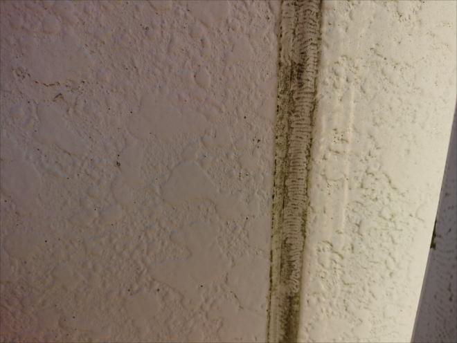 相模原市緑区根古屋にて積水ハウスで建てられた築30年経ったサイディング外壁の調査、外壁塗装の際はガスケットが使われている目地も新しくしましょう