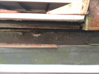 横浜市緑区の屋根調査、下地が傷んでるなら塗装ではなく葺き替えです3