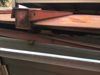 横浜市緑区の屋根調査、下地が傷んでるなら塗装ではなく葺き替えです2