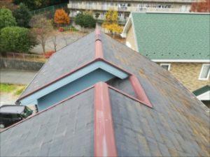 メンテナンス前の屋根の様子