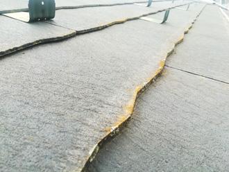 屋根に苔が発生