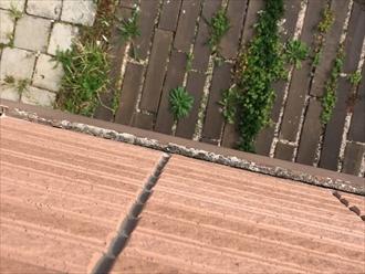 横浜市南区で外壁調査、上から覗くと分かる幕板の傷み5