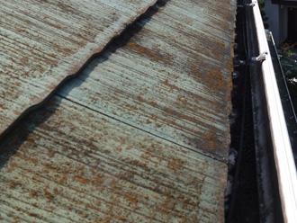 横浜市戸塚区 屋根塗装前の点検 苔が生えている
