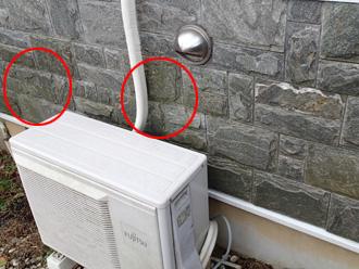 茅ヶ崎市 外壁塗装前の調査 苔が生えている
