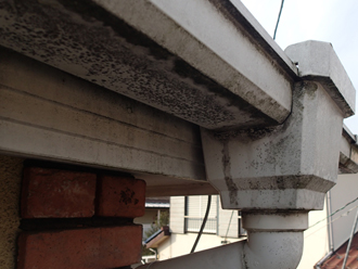 川崎市幸区 屋根塗装前点検 雨どいが汚れている