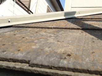 横浜市緑区 屋根塗装前の調査 スレートに苔が生えている