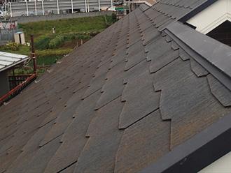 横浜市金沢区 お住まい点検 苔の生えた屋根