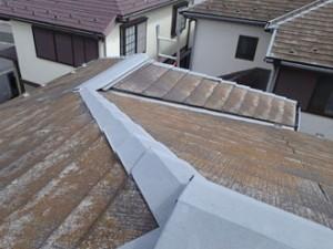 三浦市 塗装工事 点検調査 屋根の苔2