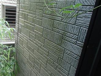 平塚市 外壁塗装前の点検 苔が生えている