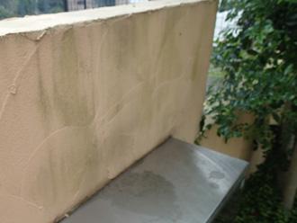 横浜市青葉区 外壁塗装前の点検 門壁に苔が生えている