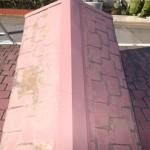 ドーマーの付いた屋根の点検