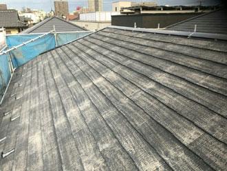 苔むした屋根がそれだけ綺麗に