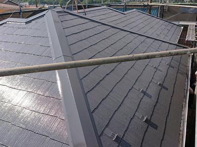 ファインパーフェクトベストでダークグレーに塗装されたスレート屋根