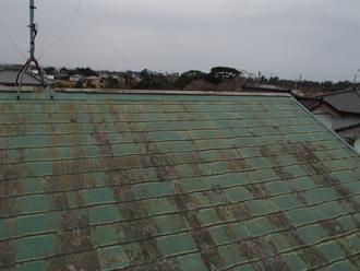 藻と苔とカビだらけのスレート屋根