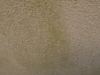 横浜市栄区小山台にてお住まいの点検調査、モルタルに苔や汚れが目立つようになったら塗り替え時期のサインです