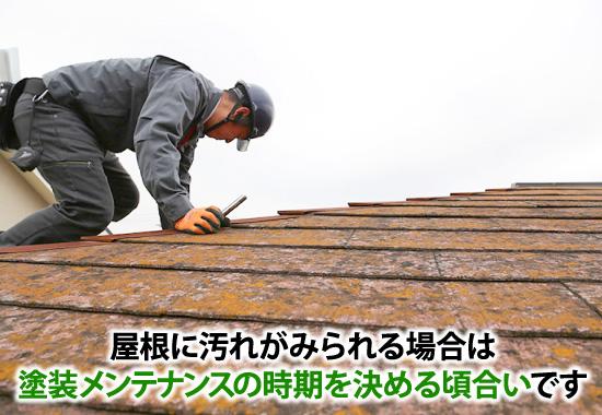 屋根に汚れがみられる場合は、塗装メンテナンスの時期を決める頃合いです