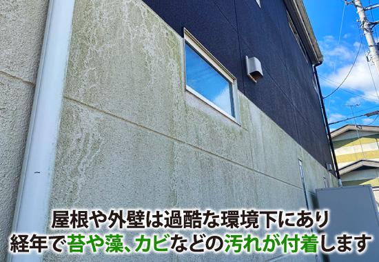 屋根や外壁は過酷な環境下にあり、経年で苔や藻、カビなどの汚れが付着します