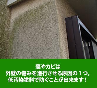 osentoryou_jup-11