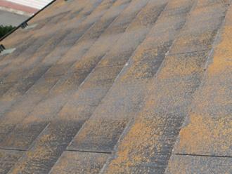 苔が目立つスレート屋根